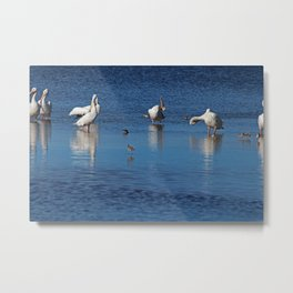 Can't Reach the Itch Metal Print