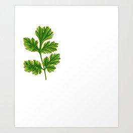 Cilantro Or Coriander   Funny Herb Art Print