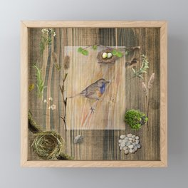 Bird and Spring Nature Collection Framed Mini Art Print