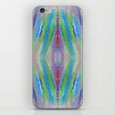 Adicar iPhone & iPod Skin