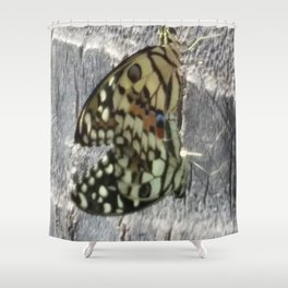 Mating Butterflies Shower Curtain