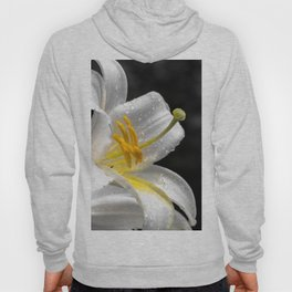 Lily flower covered by raindrops Hoody