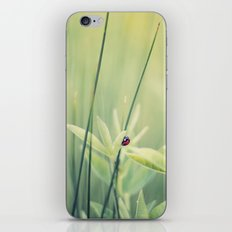 Your Own iPhone & iPod Skin