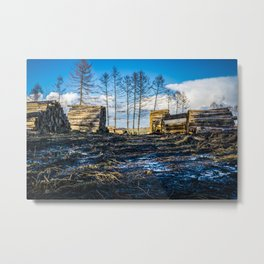 Poltery Site (Wood Storage Area) After Storm Victoria Möhne Forest Metal Print
