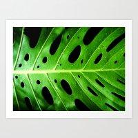 green leaf Art Print