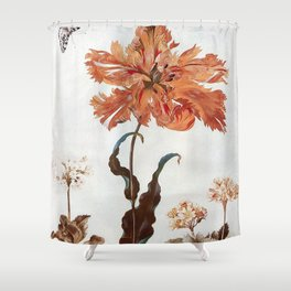 A Parrot Tulip Auriculas & Red Currants with a Magpie Moth Caterpillar Pupa by Maria Sibylla Merian Shower Curtain