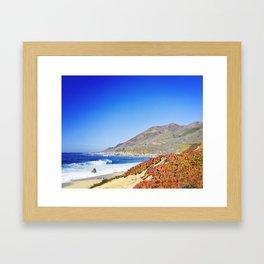 Vibrant Red Ice Plant on Beach, Big Sur, California Framed Art Print