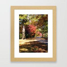 Autumn along the Fens in Boston Framed Art Print