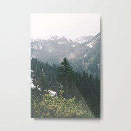 Washington V Metal Print