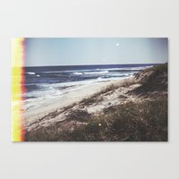 turtles Canvas Prints featuring Turtles by Mermaid's Coin Surf Art * by Hannah Kata