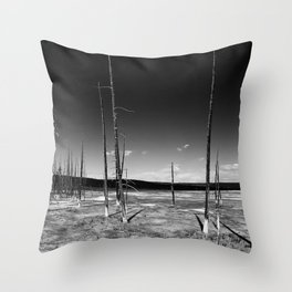 Lodgepole Pines Throw Pillow