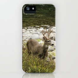 Handsome Deer on an Island No. 1 iPhone Case