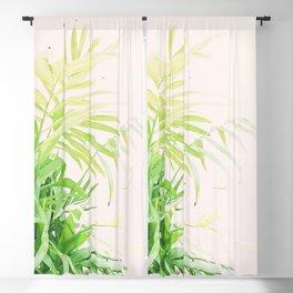 Flourish Blackout Curtain