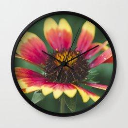 September flower Wall Clock
