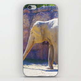 Elephant, Elefant iPhone Skin