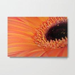 Its bloomin' orange Metal Print