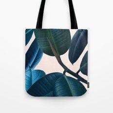Ficus elastica 2 Tote Bag