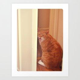 diablito cat2 Art Print