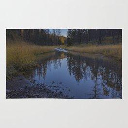 Backroad pond Rug
