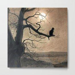 Cat In the Moonlight_Théophile Steinlen Painter (1859-1923) Metal Print