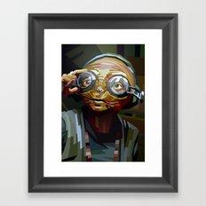 SW#66 Framed Art Print