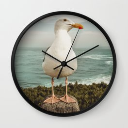 Feathered Resident La Jolla California Wall Clock
