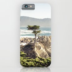 The Lone Cypress iPhone 6s Slim Case