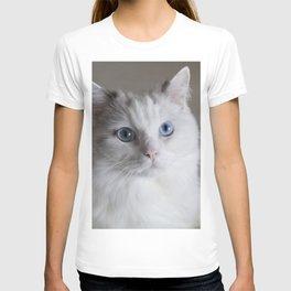 Ragdoll Cat Blue Eyes T-shirt