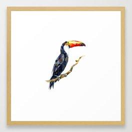 bird toucan Framed Art Print