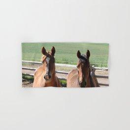 Horse Friends Photography Print Hand & Bath Towel