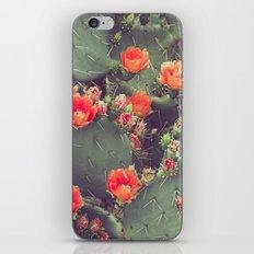 Flamenco iPhone & iPod Skin