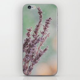 Lavender by the window iPhone Skin