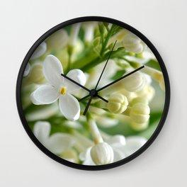 Spring 041 Wall Clock