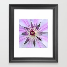 Desert Flower Framed Art Print