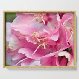 Pink Symphony Floral  of Hope by Reay of Light Photography Serving Tray