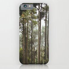 early morning Trees iPhone 6s Slim Case