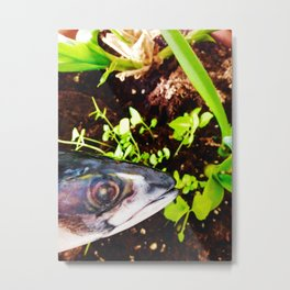 Journal from Mackerel Metal Print