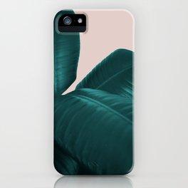 Ficus Elastica #4 #art #society6 iPhone Case