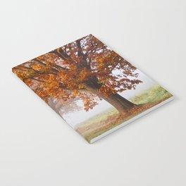 Oaks in the misty Autumn morning (Golden Polish Autumn) Notebook