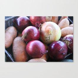 Kitchen Still Life: Onions and Sweet Potato Canvas Print