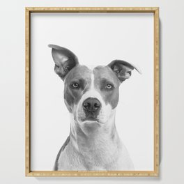 Cute Puppy Dog Portrait Art Print, Best Friend, Doggy Animal Nursery, Pet Animal Printable Poster Serving Tray