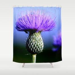 Royale Shower Curtain