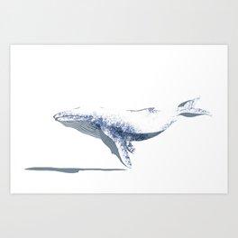 white whale Art Print