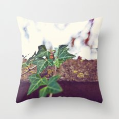 Ivy  Throw Pillow