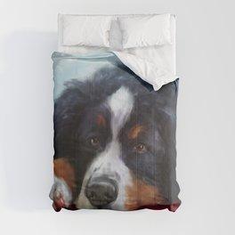 Midas Comforters