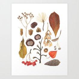 Autumn treasure chest Art Print
