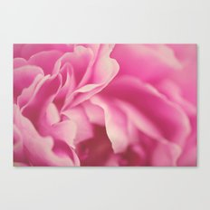 pink peony #2 Canvas Print