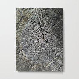 Tree's Rings Metal Print