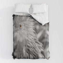 Yellow eye Comforters