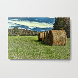 Rolling in the Hay Metal Print